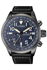 Citizen-CC3067-11L