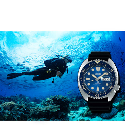 Divers' Watchessporty and modern