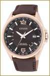 Citizen-CB0017-03W